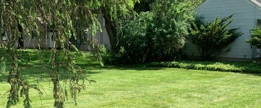 Maintain a Lawn That You Can be Proud Of